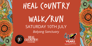 Heal Country HEADER TILE